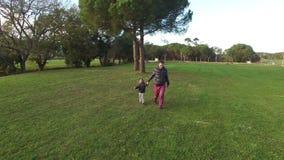 Le père et le fils courent heureusement dans la vue aérienne d'appareil-photo banque de vidéos