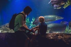 Le père et le fils regardent les poissons dans l'aquarium dans l'oceanarium Photographie stock libre de droits