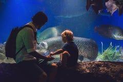 Le père et le fils regardent les poissons dans l'aquarium dans l'oceanarium Photographie stock
