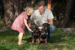 Le père montre à la fille car il est nécessaire de traiter le chien Image libre de droits