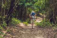Le père porte son fils dans un bébé que le transport augmente dans le touriste de forêt ramène un enfant sur le sien en forme de  image libre de droits
