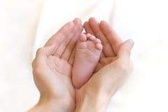 Le père retiennent doucement la patte de la chéri dans des mains Images libres de droits