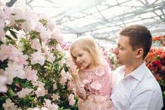 Le père tient une fille de bébé dans le jardin de floraison Photo libre de droits