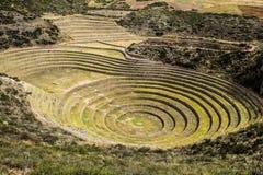 Le Pérou, Moray, terrasses antiques de circulaire d'Inca. Le probable là est le laboratoire d'Inca de l'agriculture photographie stock