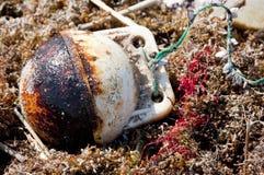 Le pétrole lave à terre sur la plage Photo libre de droits
