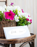 Le pétunia blanc et rose fleurit dans un panier avec le massage Photo libre de droits