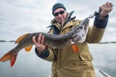 Le pêcheur à la ligne amateur tient de grands poissons de brochet Images stock