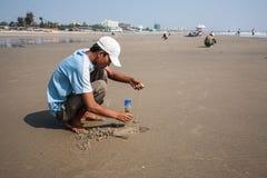 Le pêcheur attrape dans les vers de sable pour la pêche Image libre de droits
