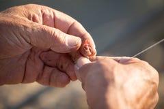 Le pêcheur met l'amorce sur un crochet de canne à pêche Photographie stock