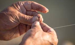 Le pêcheur met l'amorce sur un crochet de canne à pêche Photo libre de droits