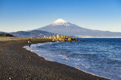 Le pêcheur pêchent Miho No Matsubara Beach avec le fond de montagne de Fuji, Shizuoka, Japon Photo libre de droits