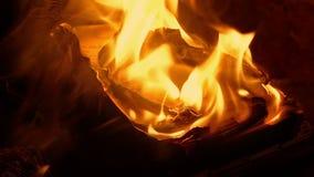 Le pagine del libro divampano in fuoco video d archivio