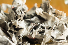 Le pagine di carta bruciate Fotografia Stock