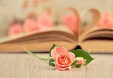 Le pagine di vecchio libro hanno curvato in un cuore e piccola rosa è aumentato fotografie stock