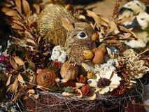 Le paglie squirrel con i dadi ed i coni Fotografia Stock Libera da Diritti