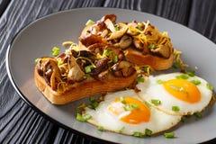 Le pain grillé délicieux avec les champignons de shiitaké et le fromage de cheddar a servi avec des oeufs au plat en gros plan d' photo libre de droits