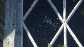 Le pallottole perforano la lastra di vetro di una casa di legno fuori della vista stock footage