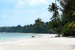 Le palme bianche tropicali e della spiaggia di sabbia che allungano fuori verso il blu hanno colorato l'oceano Fotografie Stock Libere da Diritti