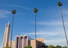 Le palme chiudono la costruzione Fotografia Stock