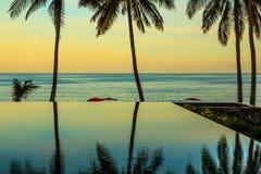 Le palme hanno riflesso in acqua Fotografie Stock Libere da Diritti