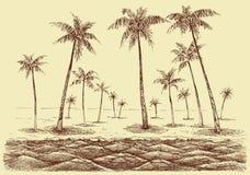 Le palme tirano il panorama in secco royalty illustrazione gratis