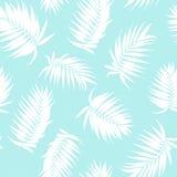 Le palmier de palmier royal laisse à modèle sans couture le bleu blanc illustration libre de droits