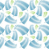 Le palmier sans couture part du modèle Image stock