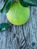 Le pamplemousse avec le vert part sur un conseil en bois Photo stock