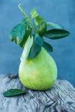 Le pamplemousse avec le vert part sur un conseil en bois Photo libre de droits