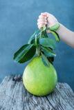 Le pamplemousse avec le vert part sur un conseil en bois Photos stock