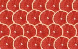 Le pamplemousse porte des fruits fond sans couture abstrait de modèle de tranche Photographie stock libre de droits