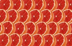 Le pamplemousse porte des fruits modèle sans couture abstrait de tranche Images libres de droits