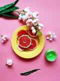 Le pamplemousse rouge d?coupe l'assiette creuse en tranches rose jaune rouge vert-bleu de plats de pulpe juteuse de pomme d'agrum photo stock