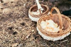 Le panier avec des pétales de rose se préparent à l'utilisation dans la cérémonie de mariage Photographie stock