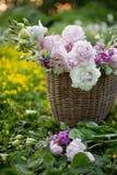 Le panier avec l'été fleurit dans le domaine dans la lumière de coucher du soleil Photographie stock