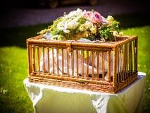 Le panier dans lequel les pigeons sont au mariage photo stock
