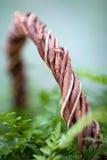 Le panier de fleur photo stock
