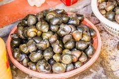 Le panier des escargots Photo stock