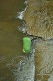 Le panier en plastique a rempli de poisson dans l'eau photos libres de droits