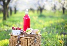 Le panier, les sandwichs et le jus dans une floraison font du jardinage Image libre de droits