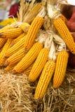 Le pannocchie di granturco limitano in pacchi alla fiera agricola immagine stock