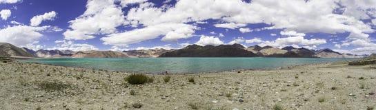 Le panorama a tiré du lac Pangon dans Ladakh, Inde Image libre de droits