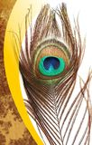 Le paon engendre avec le fond ombragé texturisé multicolore de vecteur abstrait Illustration de vecteur image libre de droits
