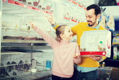 Le papa avec la fille choisissent l'animal familier entre les oiseaux Image stock
