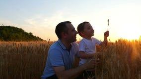 Le papa et son fils touchent les épillets du blé tandis que sur le champ contre le contexte du coucher du soleil Papa et enfant banque de vidéos