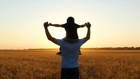 Le papa tient son fils sur ses épaules, et promenades au-dessus d'un champ de blé pendant le coucher du soleil banque de vidéos