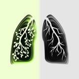 Le papier 3d abstrait a coupé l'illustration des poumons sains et malades humains verts avec la branche Calibre de vecteur dans l Photos libres de droits