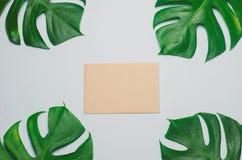 Le papier de carte de Brown avec le vert part sur le fond bleu Photo stock