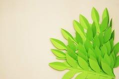 Le papier de feuilles a coupé le fond texturisé avec la texture sans couture d'ombre Tropical, feuilles d'été Photos libres de droits