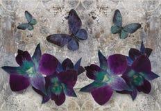le papier peint 3d, les orchidées et les papillons sur la dentelle, mur en béton ont donné au fond une consistance rugueuse L'eff illustration de vecteur